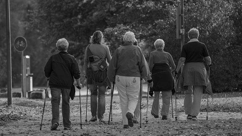 Gesundheitszentrum LUDGERUSHOF - Gesundheitsbegleitung Walking